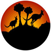 Sunset with two kangaroos — Stock Vector