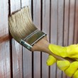 Maintaining of wooden surfaces — Foto de Stock