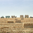 Straw bales in autumn — Stock Photo