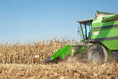 Combine harvesting — Stock Photo