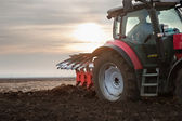 Tractor Plowing in Sunset — Stock Photo