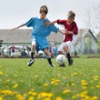 Stock Photo: Little Boy playing soccer