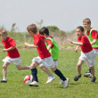Little Boys playing soccer — Stock Photo #10365624