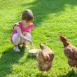 Girl and chickens — Stock Photo #10495272