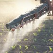 Tractor fertilizes crops - Stock Photo