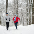 Family Running Through snow — Stock Photo