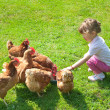 Girl and chickens — Stock Photo #9763112