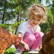 Girl feeding chickens — Stock Photo