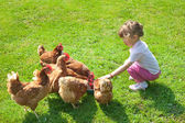 Girl and chickens — Stock Photo