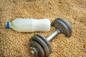 Protein competition — Stock Photo