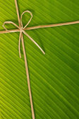Banana rope and leaf — Stock Photo