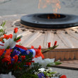 Eternal flame on grave of the unknown soldier — Stock Photo #9533979