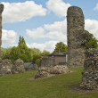 Bury st. Edmunds -Abbey Garden Ruins - Stock Photo