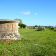 Elizabeth Cook Monument ( Grave ) - Stock Photo