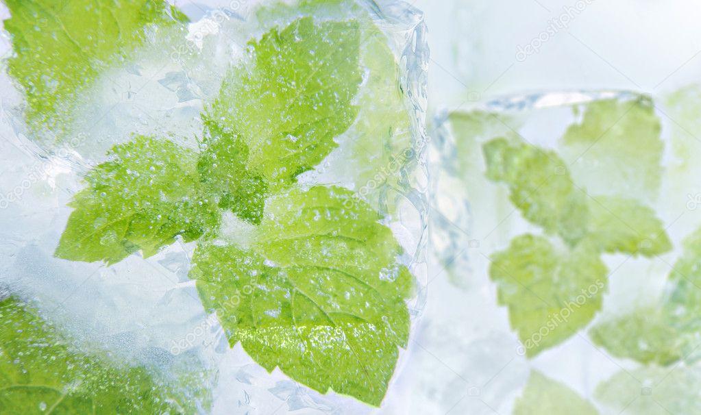 Ice mint — Stock Photo © j0lita #9450081