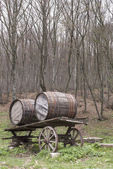 Wheelbarrow with wine barrels outdoor — Stock Photo