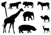 African Animal silhouettes — Stock Photo