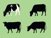 Grassing cows — Stock Vector