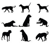 Dog silhouettes — Stock Vector
