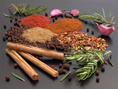 Still Life - Herbs and Spices — Stock Photo