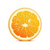 Orange vector illustration — Stock Vector