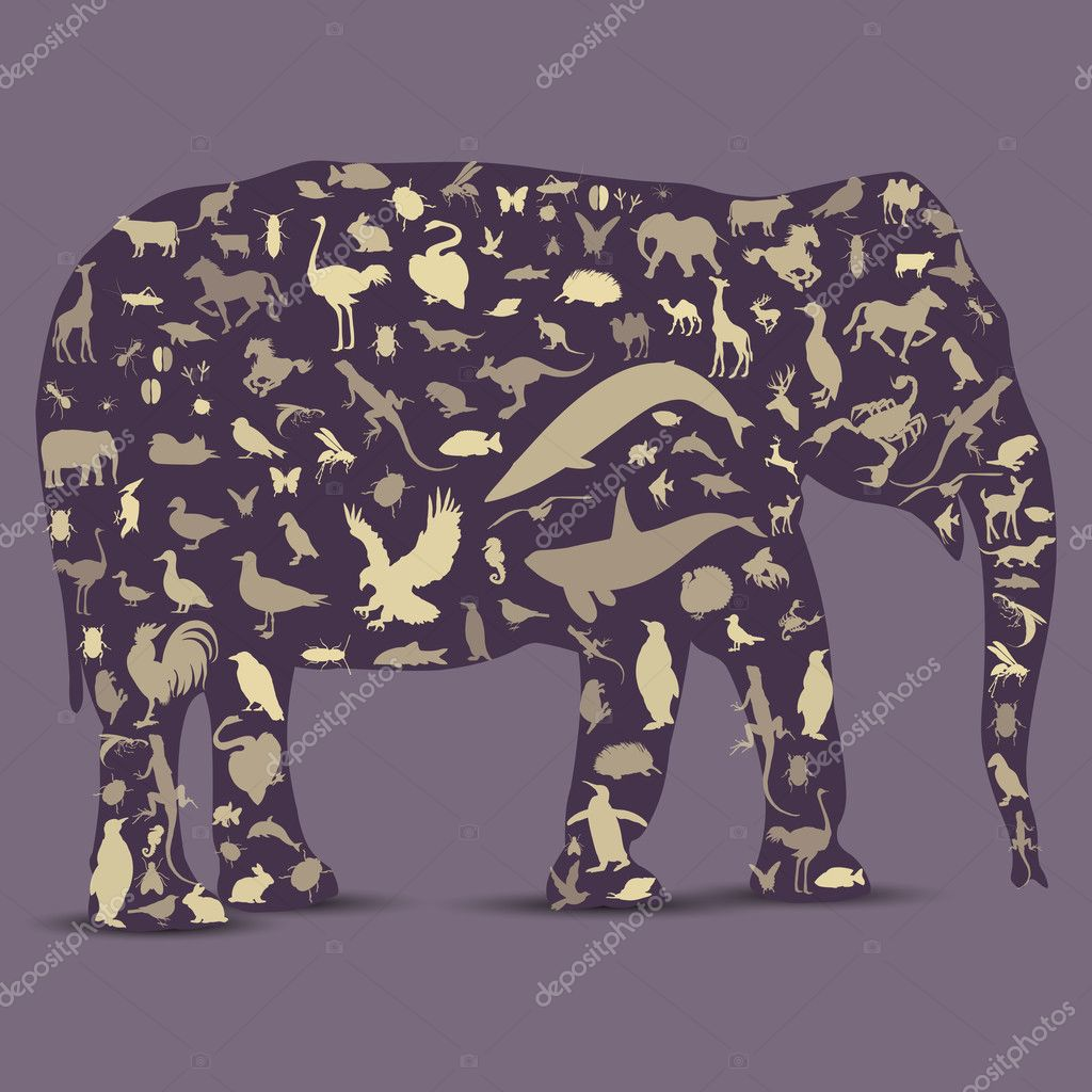 Elephant Globe outline made from birds, animals icons  Stock Vector #10664418