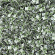 Giant money background flying 100 euro notes — Stock Photo