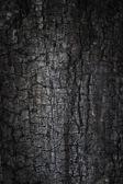 Burnt grunge background — Stock Photo