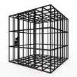Empty cage - Stock Photo
