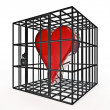 Caged heart — Stock Photo