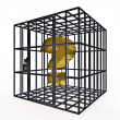 Stock Photo: Caged dollar
