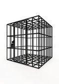 Empty cage — Stock Photo