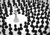 Chess white king surrounded — Stock Photo