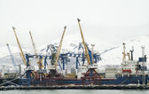 Large gantry cranes at the port. — Stock Photo