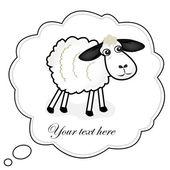 Cute sheep — Stock Photo
