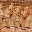 Постер, плакат: Bunch of Cool Camel Toy