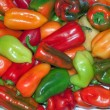 Bright bulgarian pepper — Stock Photo