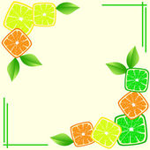 Background with citrus slices — Stock Vector