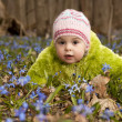 Girls are picking up bluebells and are putting them into the bas — Stock Photo #9673288