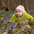 Girls are picking up bluebells and are putting them into the bas — Stock Photo