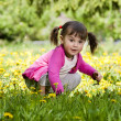 A little girl wearing a pink shirt, sitting on the dandelion fie - Stock Photo