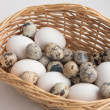 Royalty-Free Stock Photo: Egg basket