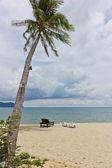 Beach koh chang trat, thailand — Stockfoto