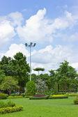 Parque no céu muito claro. — Foto Stock
