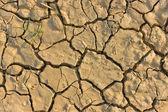 The soil broken dry. — Stock Photo