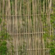 Stock Photo: Bamboo fences