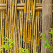 Bamboo fence — Stock Photo #9897238
