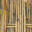 Bamboo fence. — Stock Photo #9927377