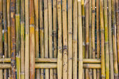 Bamboo fence. — Stock Photo