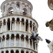 Pigeon lands on the statue with Pisa tower background — Stock Photo #9664296